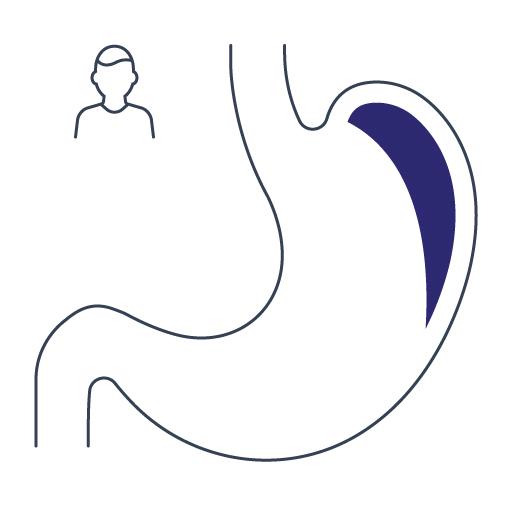 Gastroenterolog dziecięcy Lublin, Gastromed