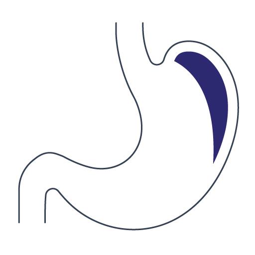 Gastroenterolog Lublin, Gastromed
